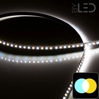 Ruban IP65 3528 - Blanc Pur + Chaud - 4,8W/m - 120 LED/m - 5m